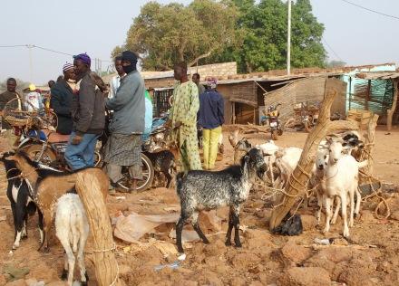 Marché aux bestiaux